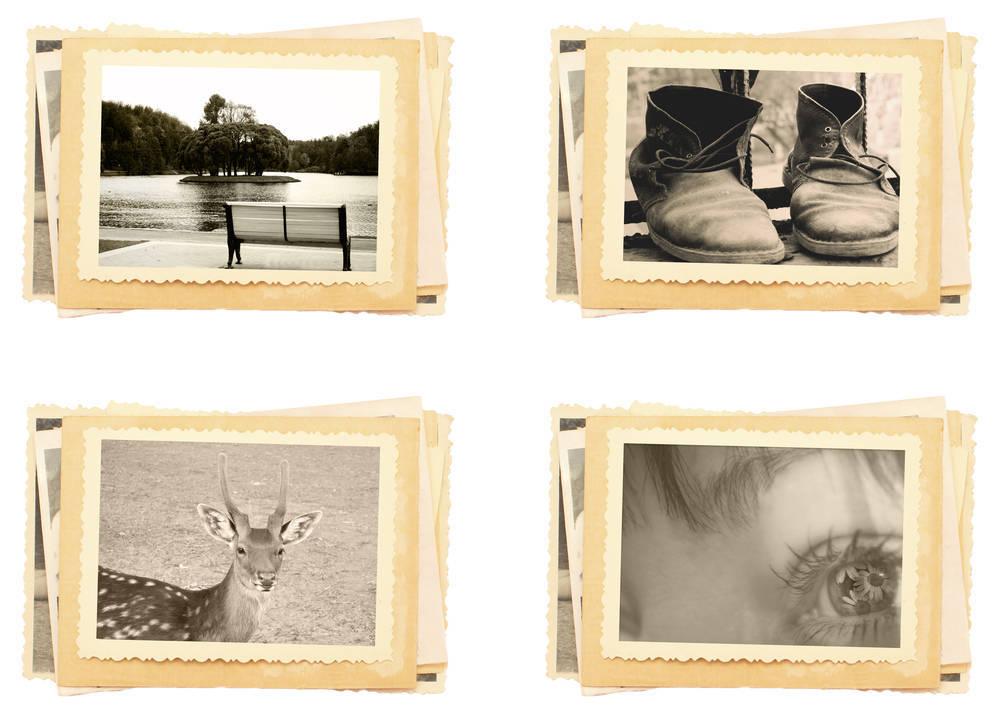 La Fotografía Digital vs Fotografía Analógica