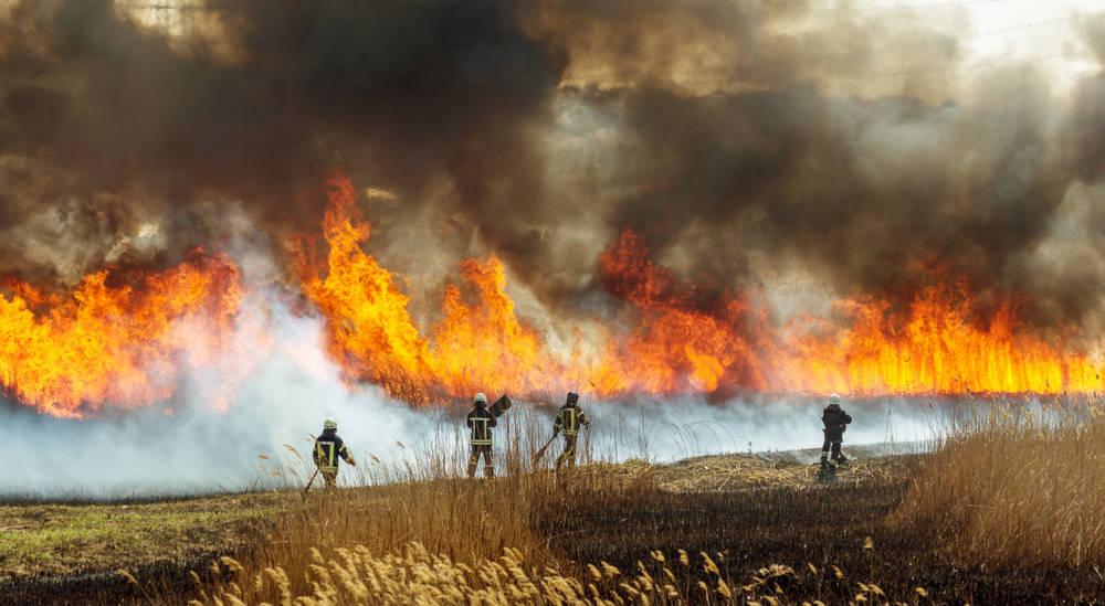 Tecnología para evitar incendios